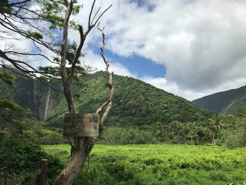 Cascade Pololu Valley paysage